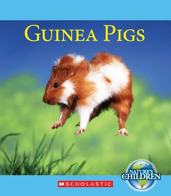 Guinea Pigs By Marsico, Katie